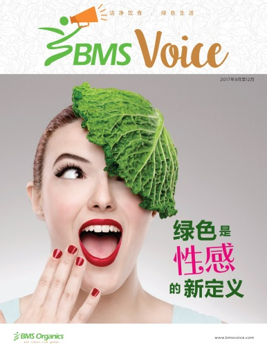 BMS voice cover Chinese