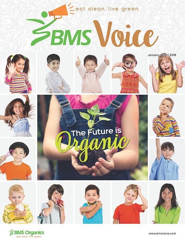 BMS voice Jan18